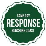 Same-day-responce
